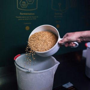 Ingrédients versés dans un bécher, pour fabriquer sa bière